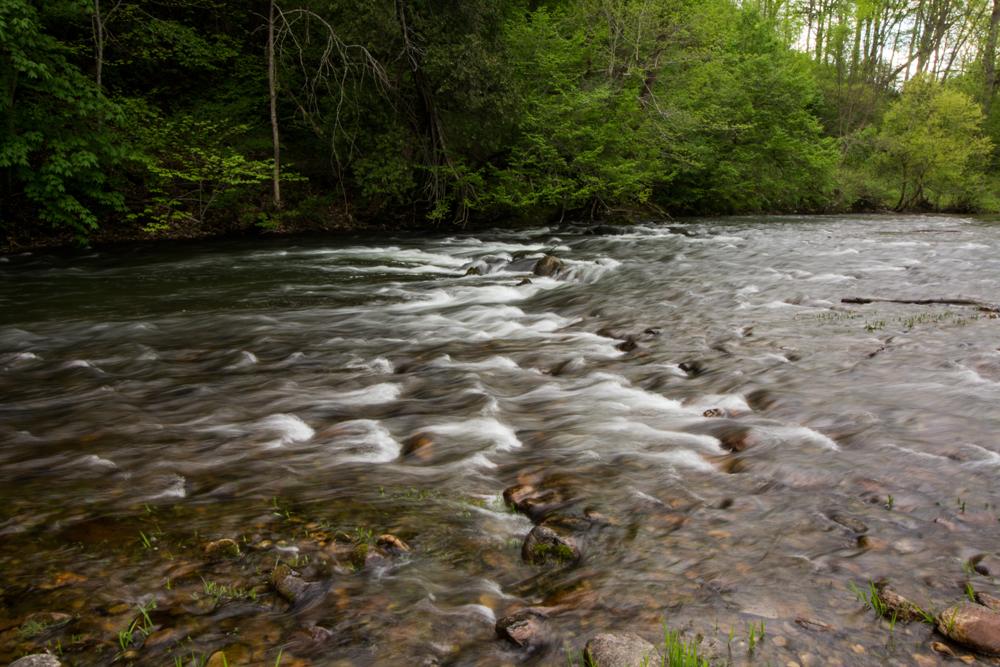 walker-creek-6-small